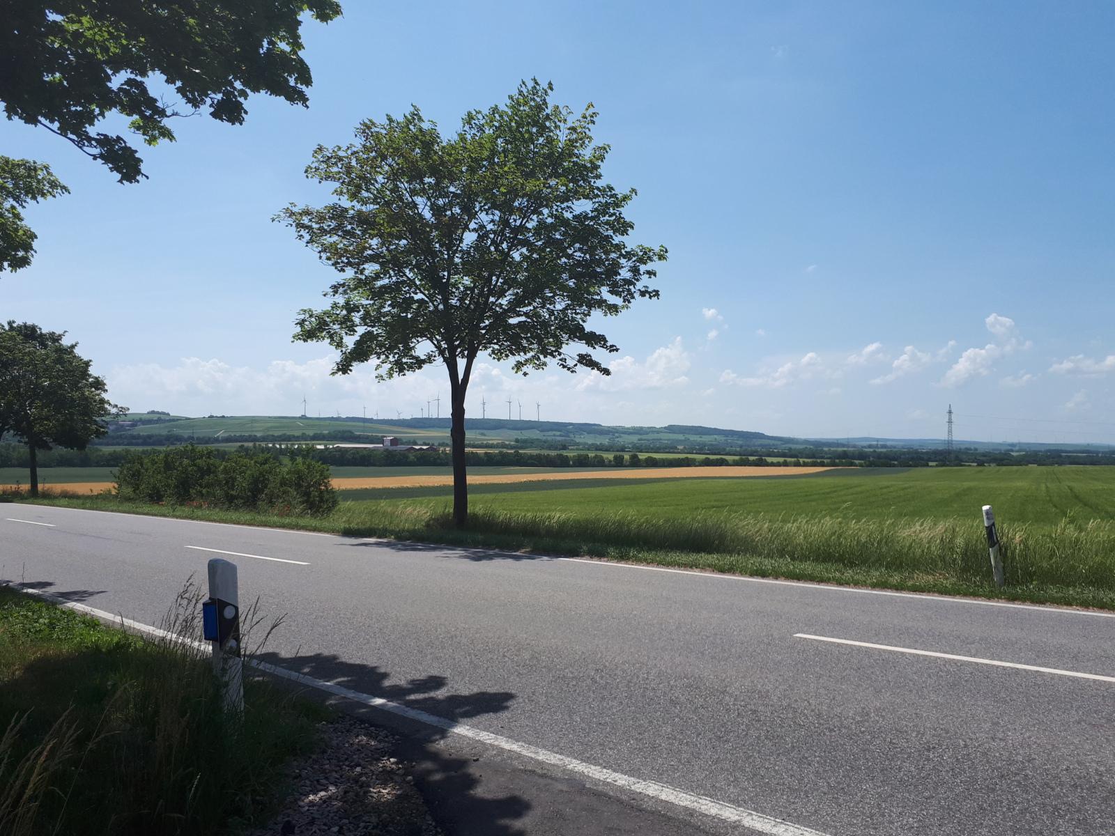 Rheinhessen Life 1